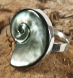 Silver ring with shiva-shell - 8