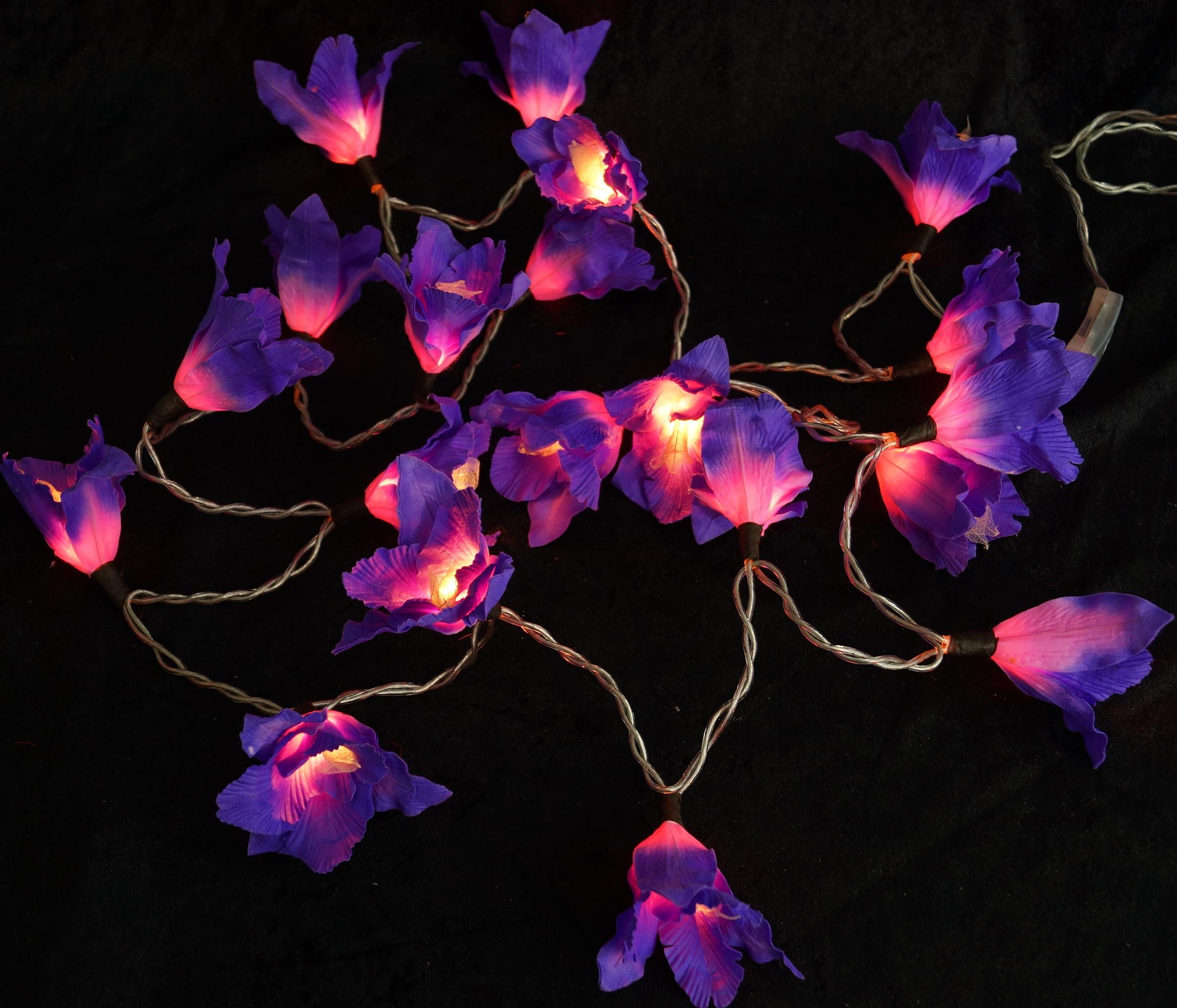Lotus led lichterkette 20 stk lila ebay - Lichterkette lila ...
