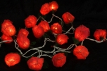 Blossoms light chain 20 pcs. rose light red